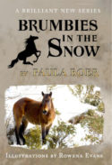 brumbies-in-the-snow-cover