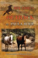 brumbies-outback-cover