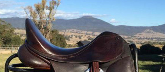 How Much Do You CAIR What's Inside Your Saddle? (Includes Pictures